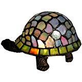 51gGyAbYimL._AC_UL160_SR160160_turtlegoodimage