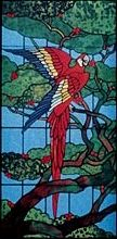 CKE-168 Hungry Parrot (Stained Glass Full Size Patterns)