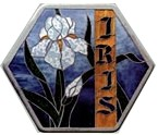 CKE-195 Country Iris (Mosaics Stepping Stone Stained Glass Patterns)
